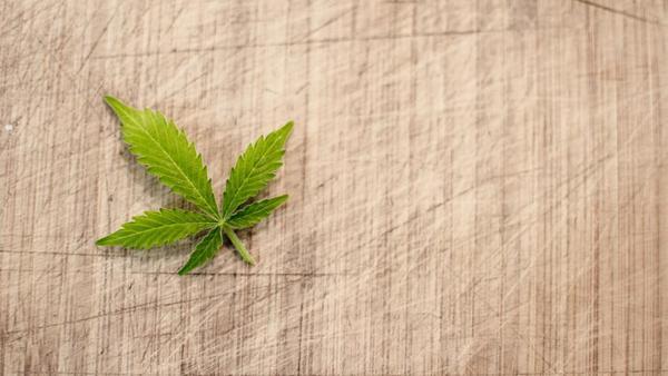 Why Recreational Marijuana Is Still a No-Go in Florida